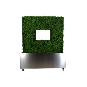 R40067-04_boxwood_hedge_planter