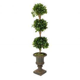 R40292-00 Arcadia Topiary angle