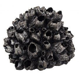 R40464-00-Barnacle-Sculpture-rental-Black-feature