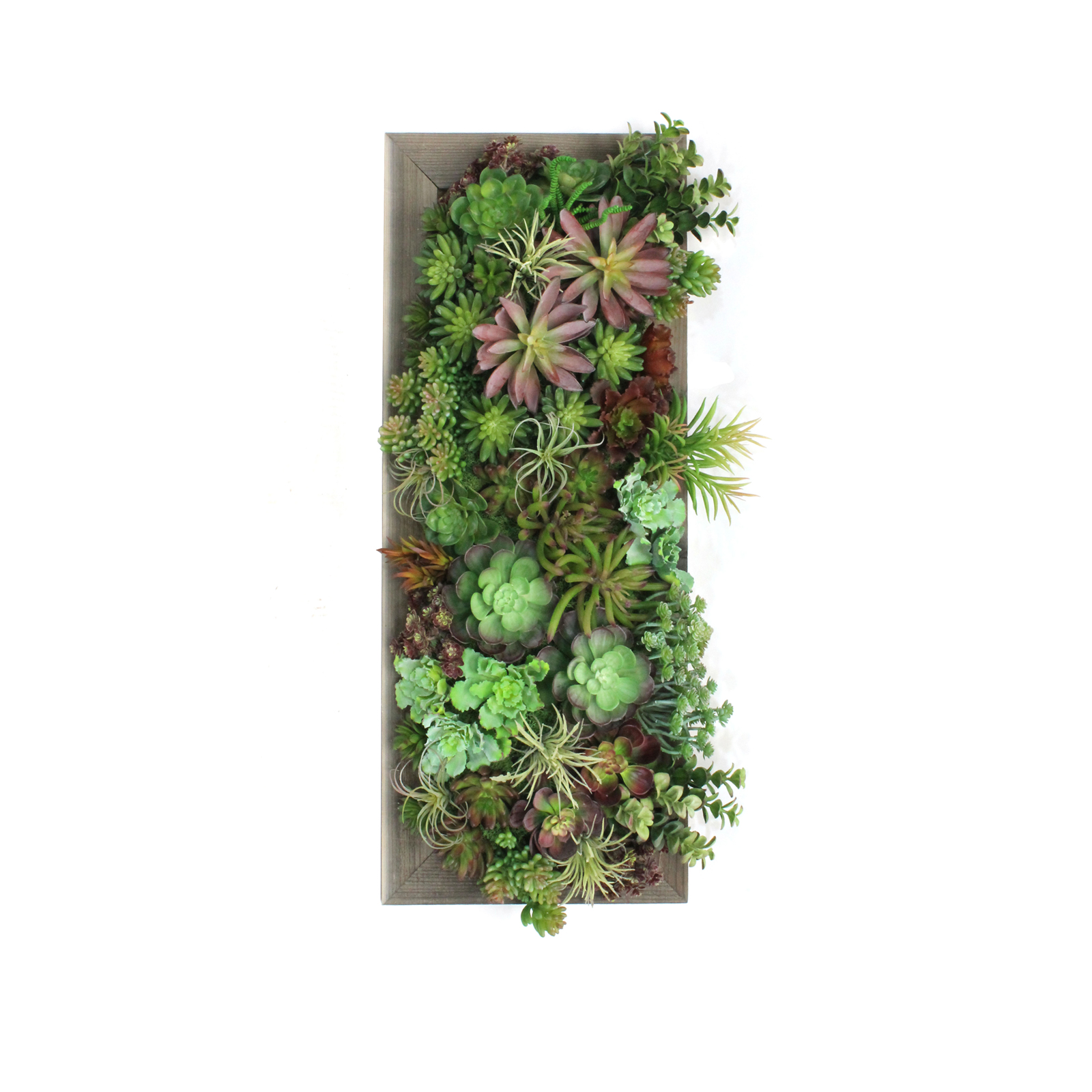 Succulent Wall 7 Event Trade Show Furniture Rental Formdecor