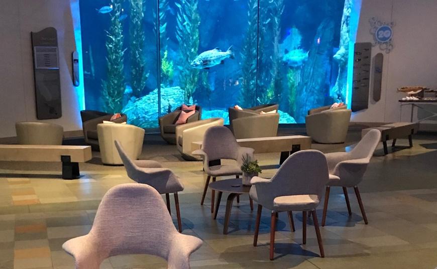 Facebook Artificial Intelligence-sofa-rental-chair-table-decor-14